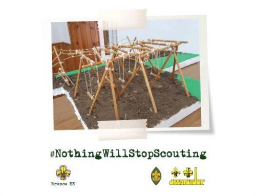 #NothingWillStopScouting – Gli esploratori non si fermano